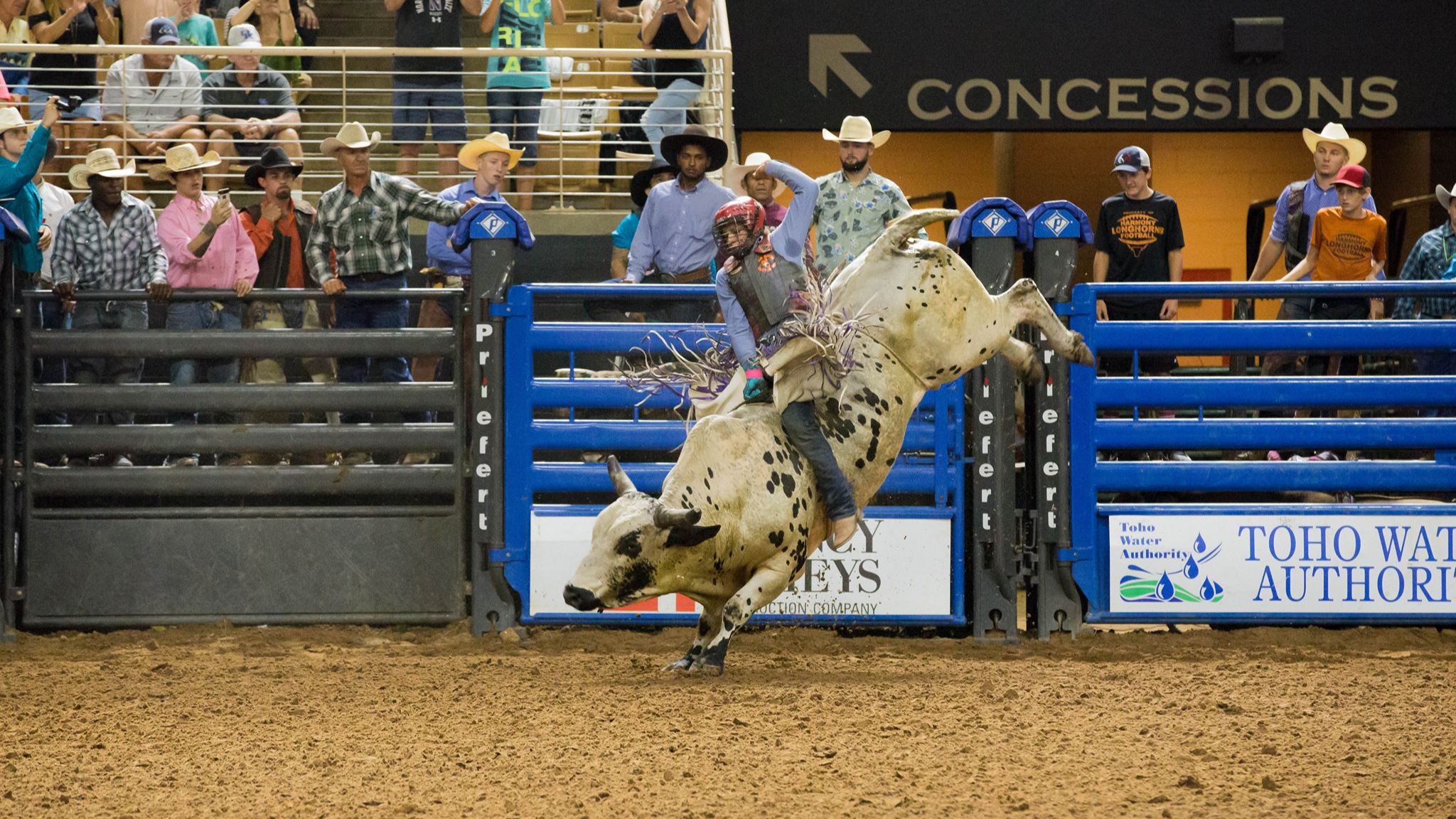 Photo for 7th Annual Monster Bulls on ViewStub